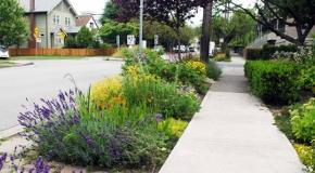 Street Gardens City Of Vancouver