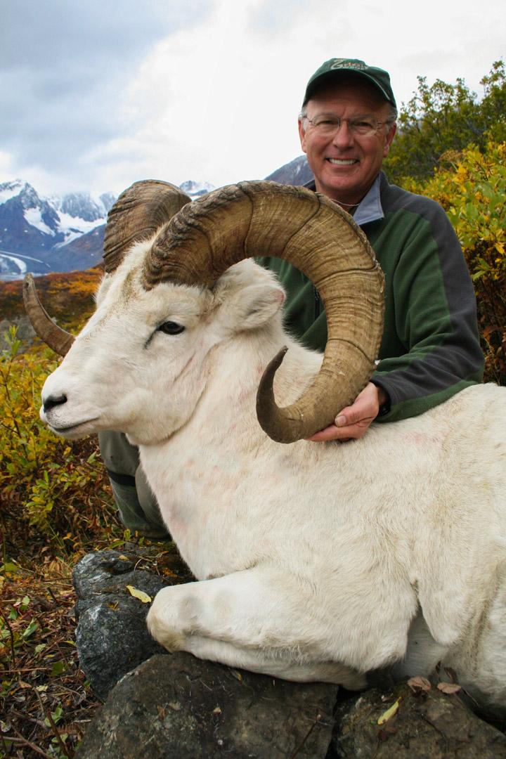 Dall Sheep Hunting Photos By Vast Alaska