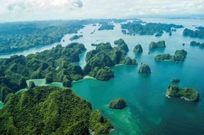 Novo filme de King Kong começa suas filmagens no Vietnã.