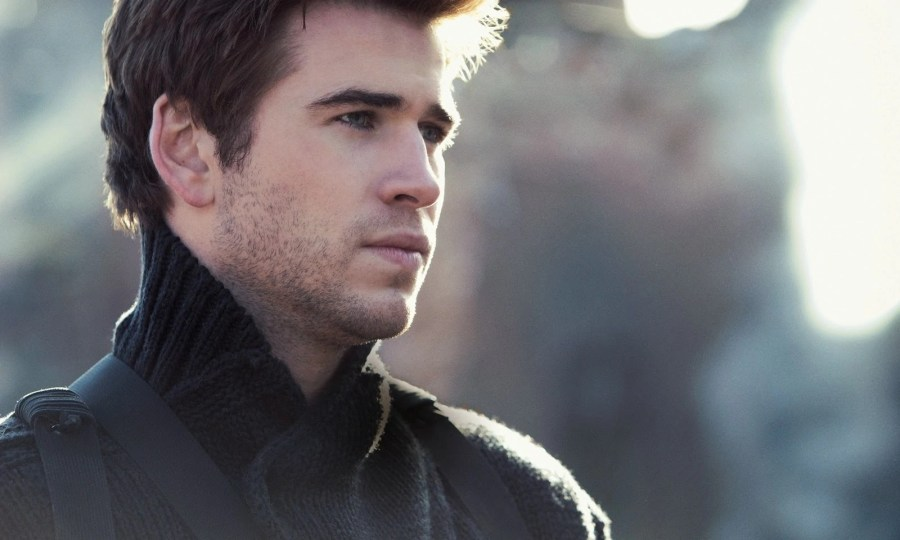 Gale Hawthorne   The Hunger Games Wiki   FANDOM powered by Wikia The Hunger Games Mockingjay Part 1 Gale