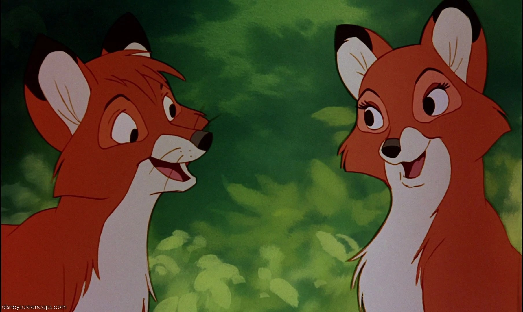 Tod Fox And Hound