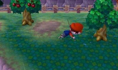 Luck | Animal Crossing Wiki | FANDOM powered by Wikia