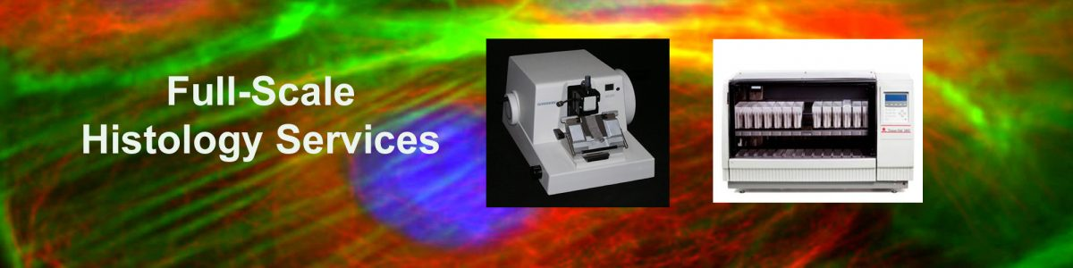 Vitrovivo Biotech Histological Products Amp Services