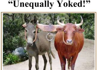 Courtship-UNEQUALLY-YOKED