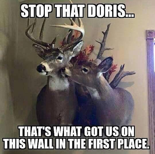 Happy Thanksgiving Deer Hunting