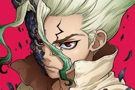 Dr Stone