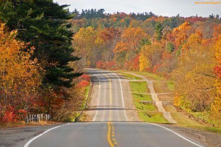 Black Asphalt Road Between Brown Fields During Daytime Source Indian Highway Hd Images Many HD Wallpaper