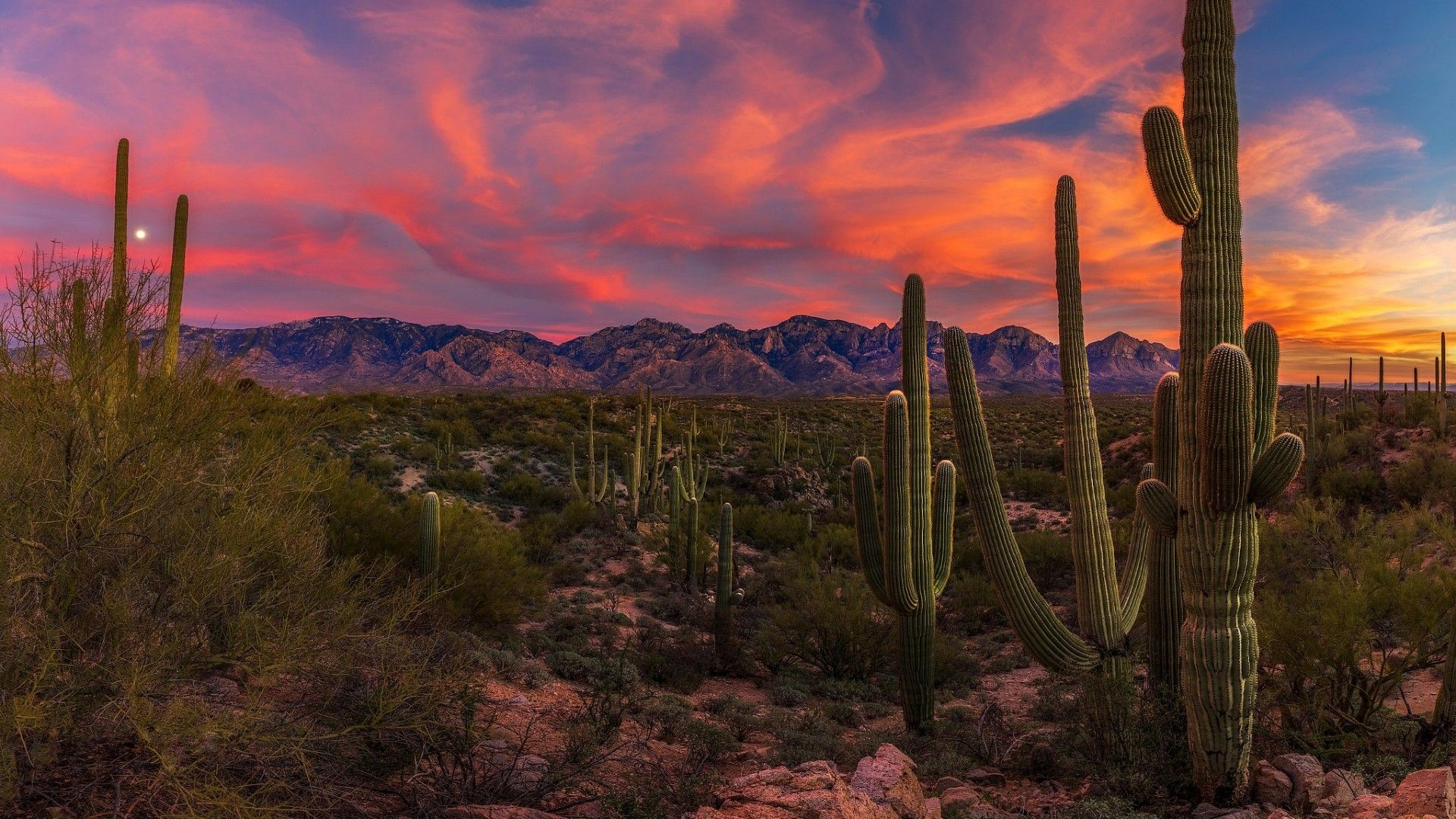 Arizona Desert Wallpaper Laptop