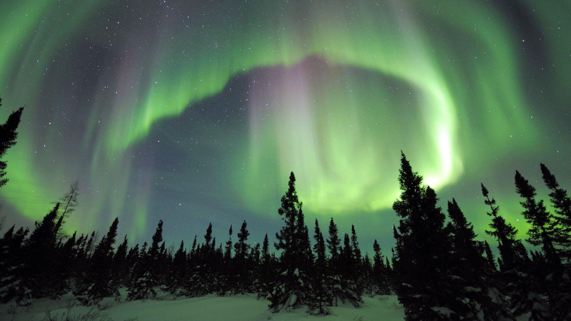 Northern Lights 113