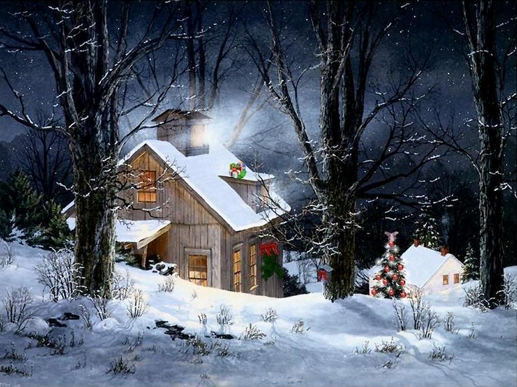 Christmas Tree Farm New York