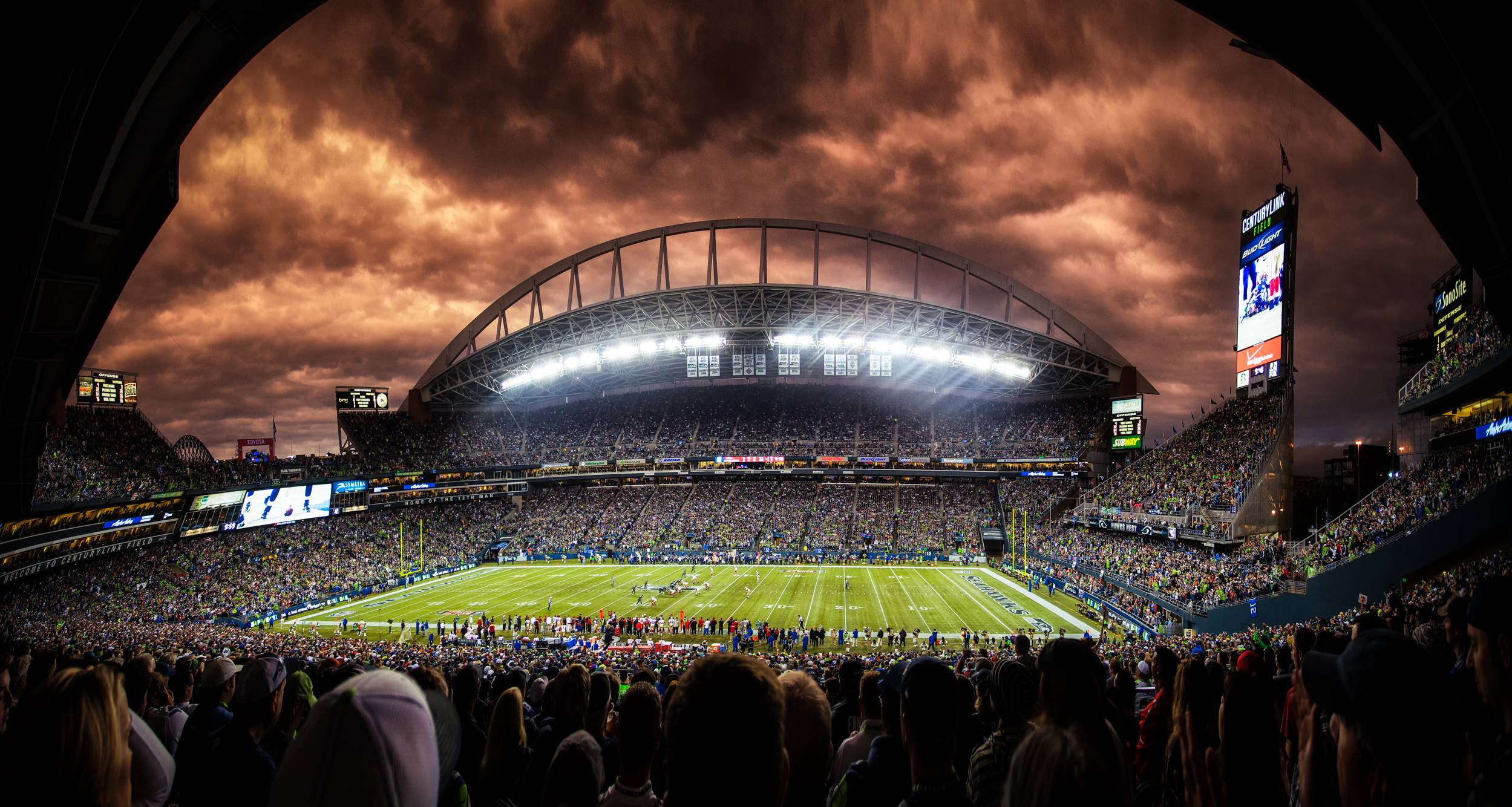 Seattle Seahawks Christmas Lights