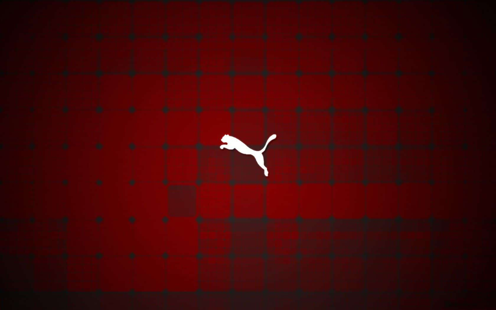 Puma Wallpapers For Mobile - Wallpaper Cave