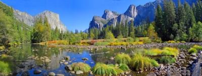 Wallpaper Yosemite, 5k, 4k wallpaper, 8k, forest, OSX ...