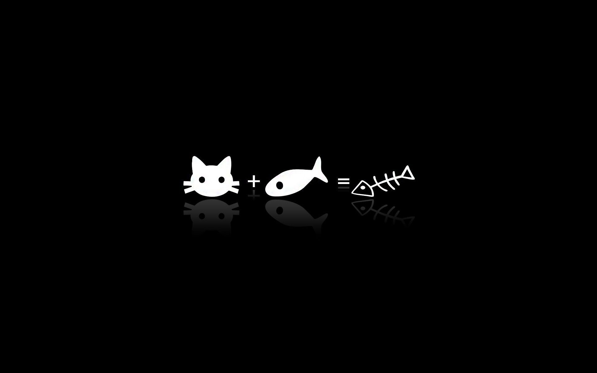 Cat Wallpaper Persona 5