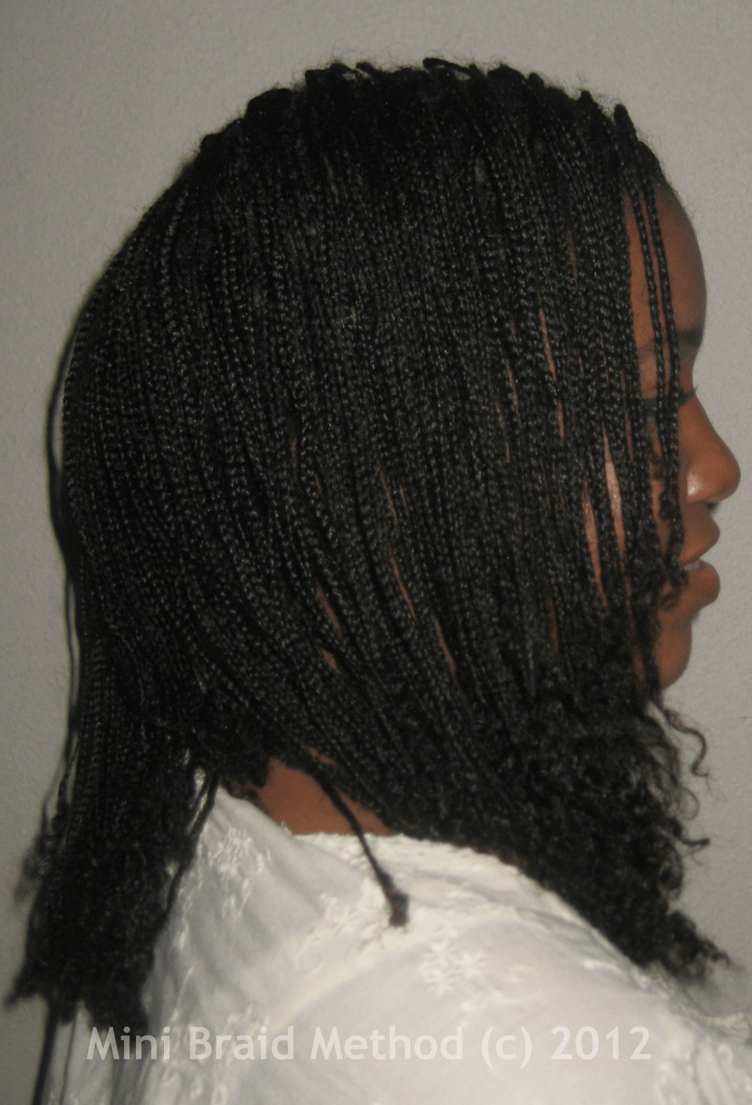 New Mini Braids On Natural Hair My Mini Braids A History Ideas With Pictures