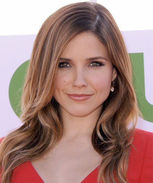 New Sophia Bush Casual Long Straight Hairstyle Light Ideas With Pictures