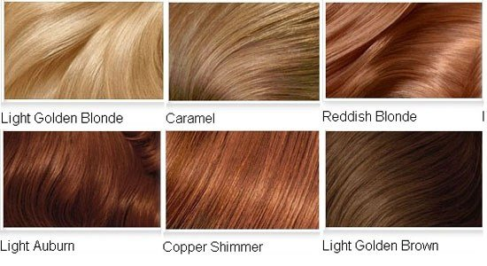 New Hairstyle 2014 Medium Golden Brown Hair Color Chart Ideas With Pictures