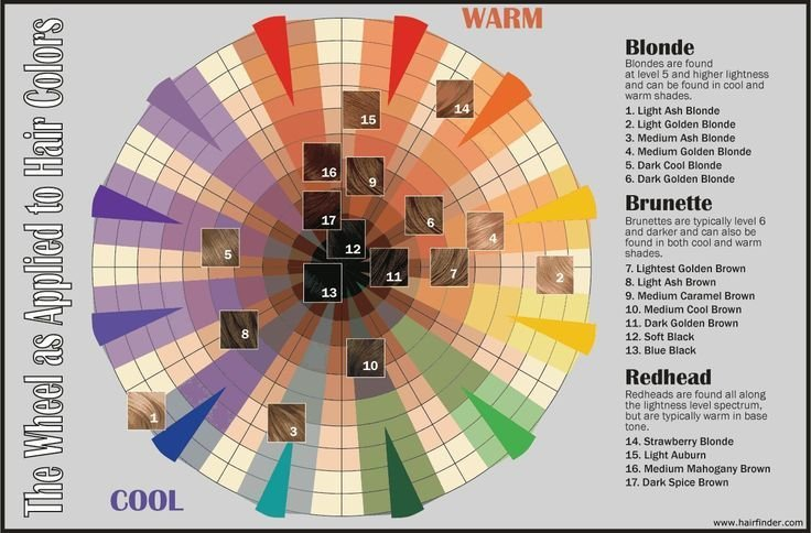 New Hair Color Wheel Let S Face It Pinterest Ideas With Pictures