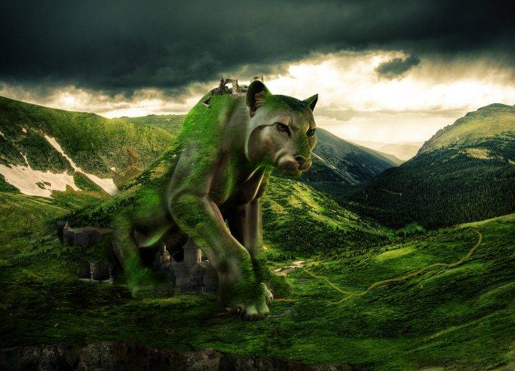 Puma in Mountain Wallpapers HD / Desktop and Mobile ...