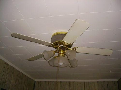 Encon ceiling fans westinghouse aloadofball Gallery