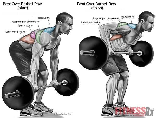 How to Get a Big & Thick Upper Back