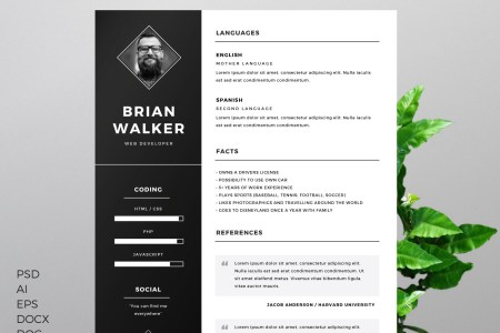 The Best CV   Resume Templates  50 Examples        Web eMailing Resume Template for Word  Photoshop   Illustrator