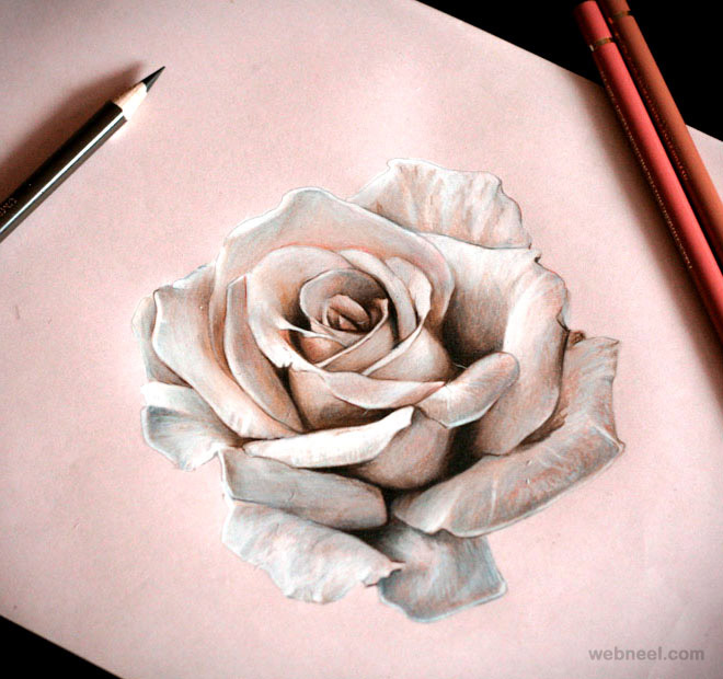 25 Beautiful Rose Drawings and Paintings for your inspiration