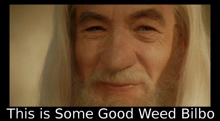 Gandalf Tells Bilbo This Is Good Weed Memes Hot Trending Now