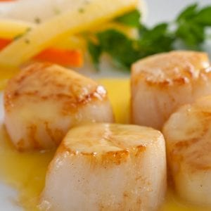 seared scallops
