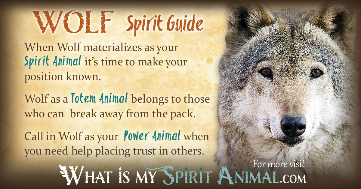 Spirit Guide Native American Symbol Today Manual Guide Trends Sample
