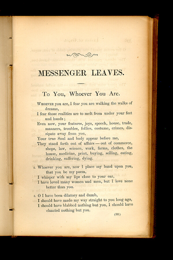 To You Whoever You Are Leaves Of Grass 1860 1861 The Walt Whitman Archive