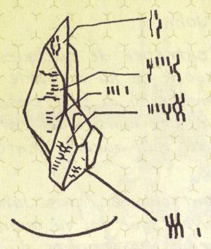 Art 233 Fact De Sigma Octanus Iv Wikihalo
