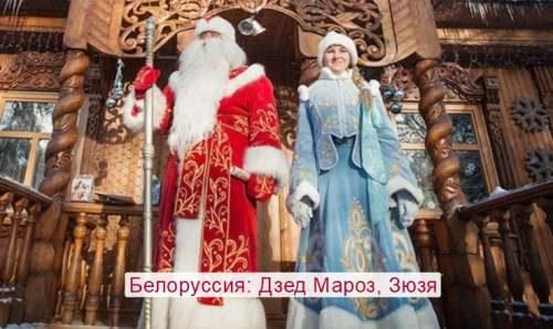 Belarus Dzed Maroz, Zyuzy