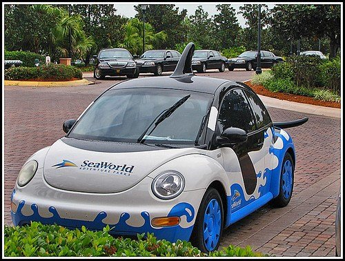 New I M Not A Beetle I M A Killer Whale A Vw New Beetle On This Month