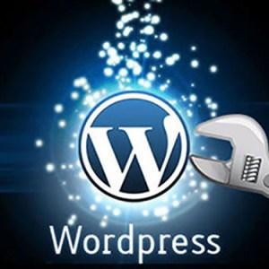 WordPress Auto Save ve Revisions ayarlamak
