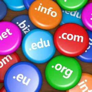 Domain süresi dolunca ne olur?