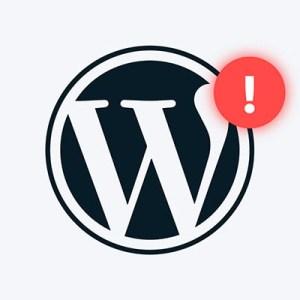 WordPress sorun giderme hizmeti