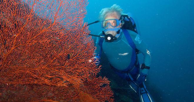 海洋学者は誰ですか - それがうまくいっているところ、賃金のレベル、どこで学ぶべきか?