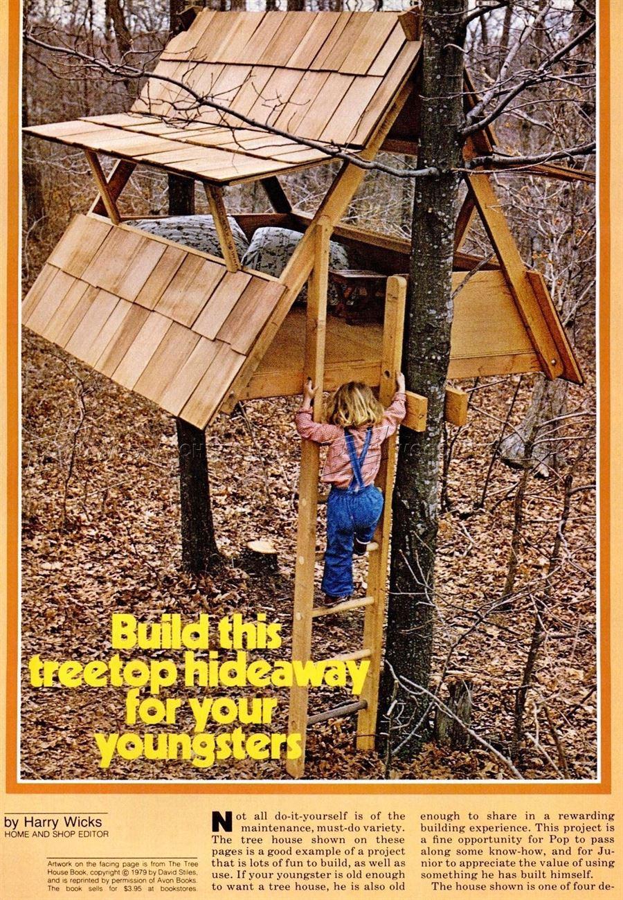Build Treehouse Woodarchivist