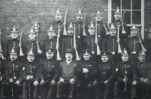 Hair Hair Long And Short Saint Bernard Pictures