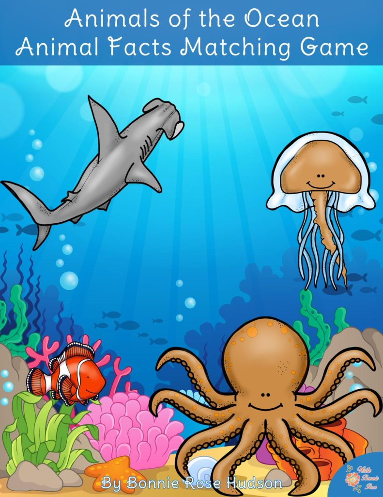 Image of: Dolphins Writebonnierosecom Writebonnierosecom Animals Of The Ocean Animal Facts Matching Game