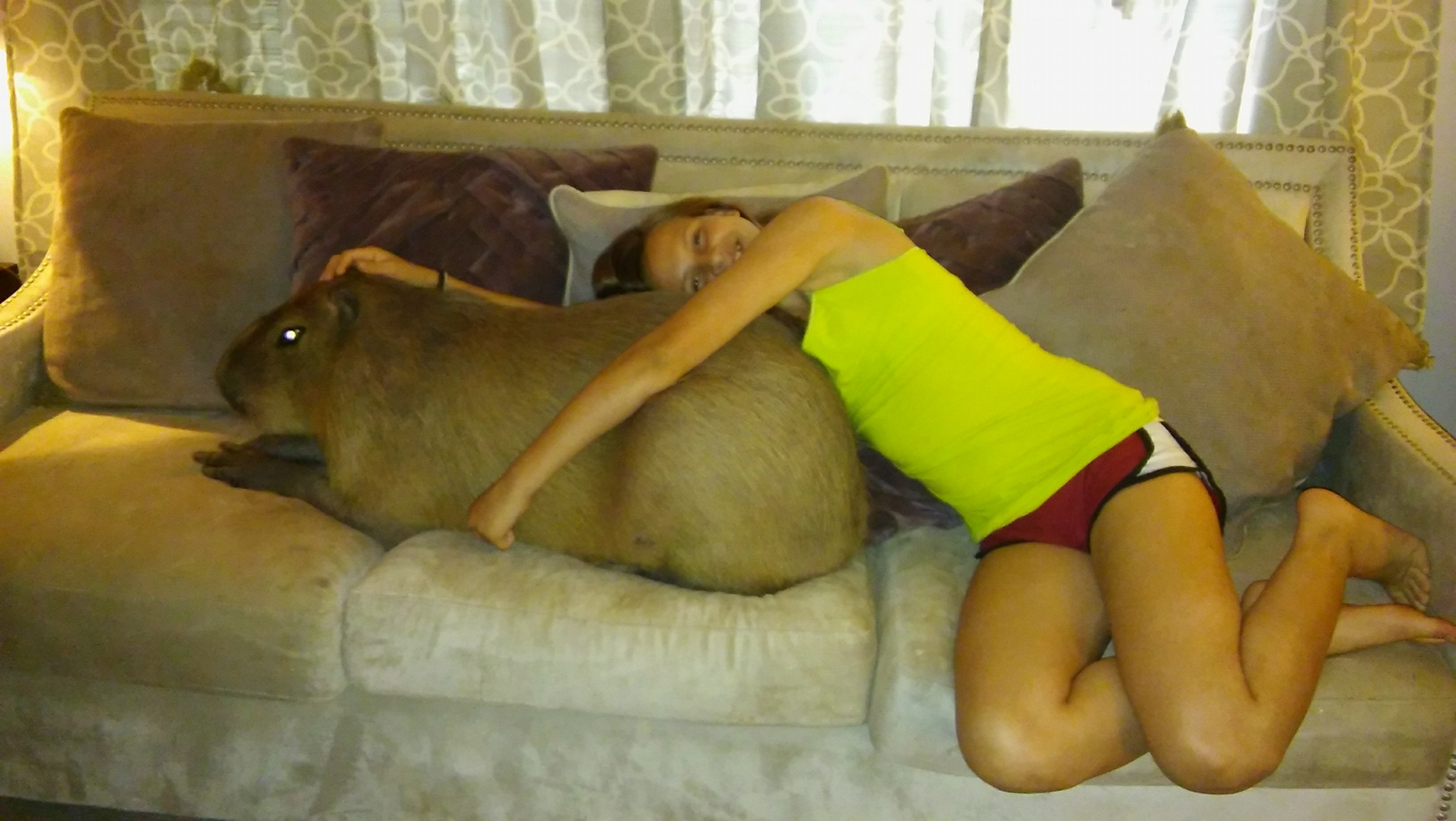 Photos Texas Family Keeps World S Largest Rodent As