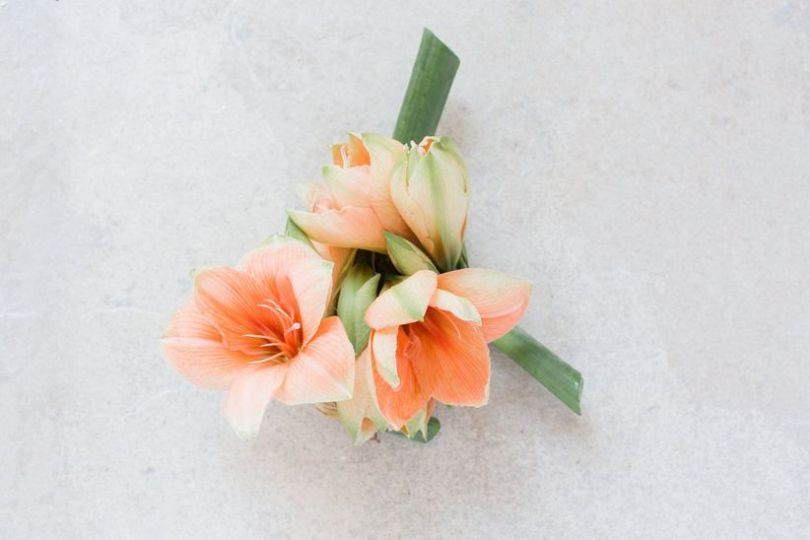 7 Winter Wedding Flowers You ll Absolutely Adore   WeddingWire amaryllis wedding flowers