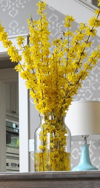 Forsythia Blooming And Decoration Ideas 1001 Gardens - Patio Ideas