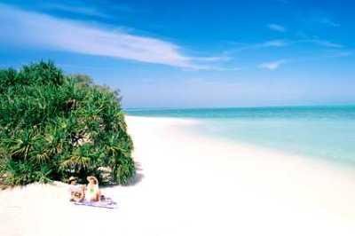 Heron Island, queensland, Australia Hotel Accommodations ...