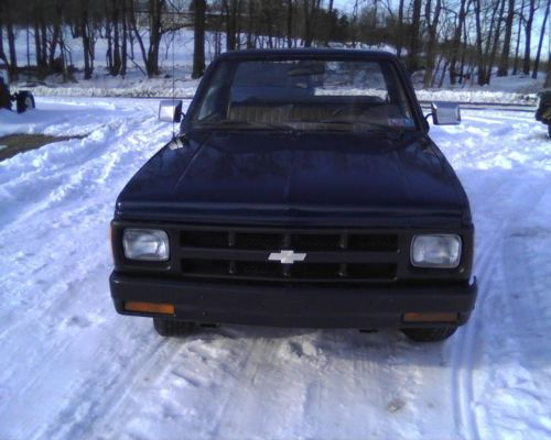 1991 S10 Pickup