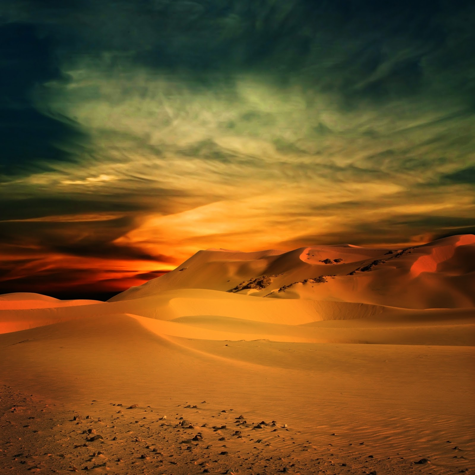 Sand Dunes 2040 Digital Llc