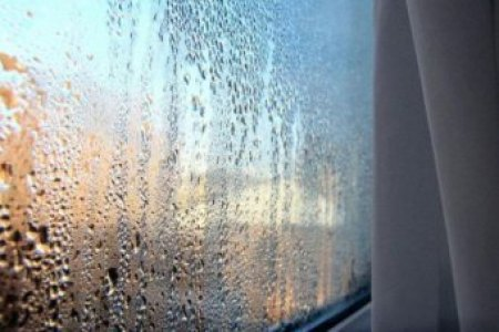 How to fight the annual winter mould attack on your home   ABC News     Window condensation Photo  Condensation builds on the windows as Canberra s  temperatures drop
