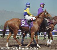 2005 Breeders Cup Entries