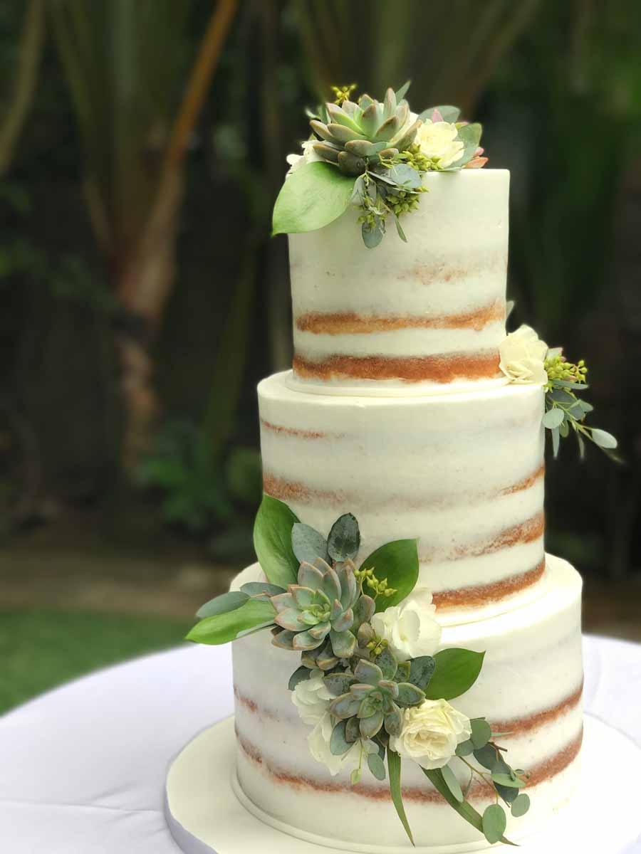 Semi Naked   A Cake Life Semi Naked with Succulents